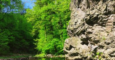 Weißeritz in der Nähe der Somsdorfer Klamm